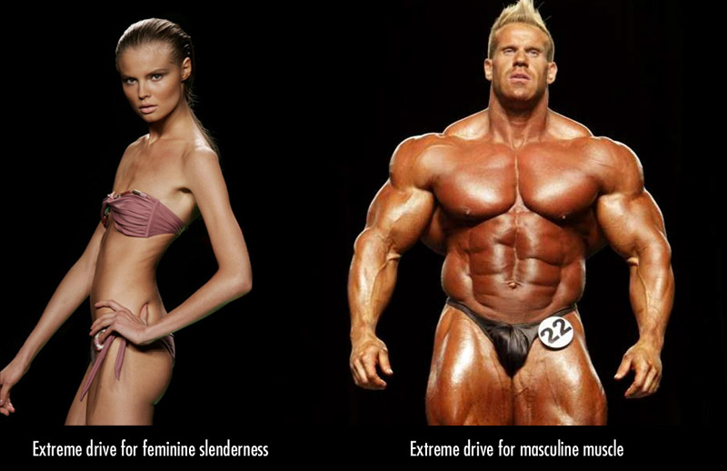 female slenderness vs masculine muscularity (and the ideal female body / physique)