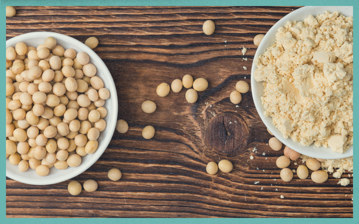 What are the best vegetarian and vegan foods for protein?